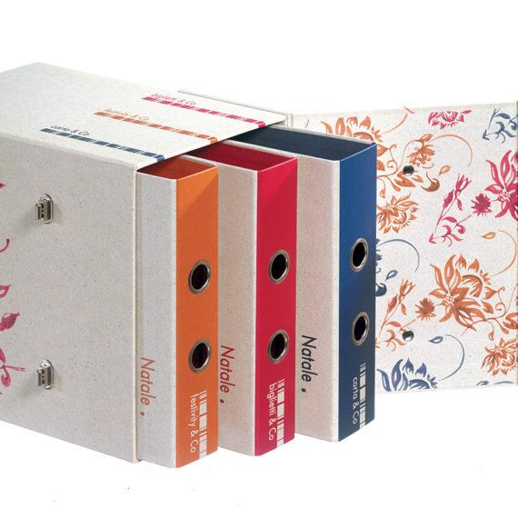 box portacampionari colorato